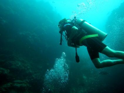 Barracuda Point wall diving, Sipadan