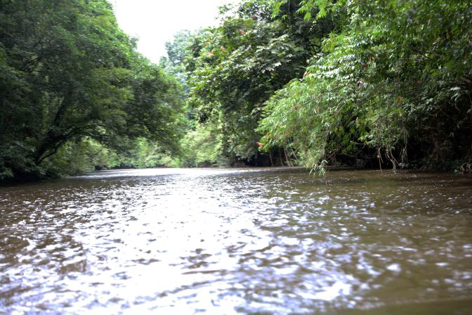 Melinau River, Gunung Mulu National Park