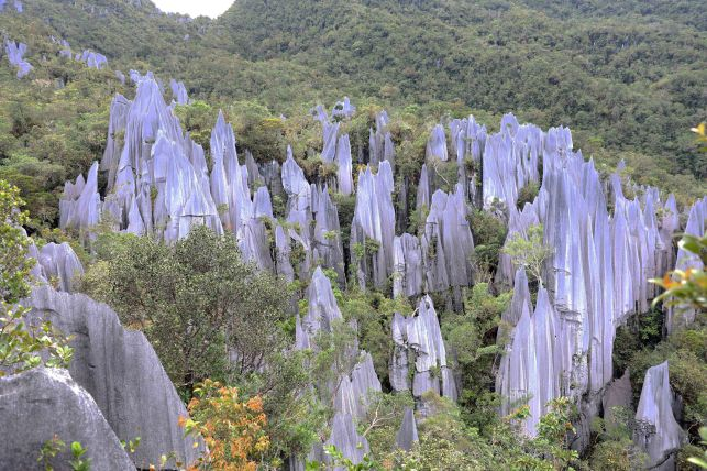 Pinnacles on Gunung Api