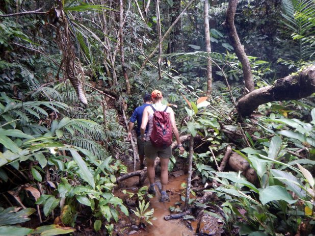 Approach to Waterfall