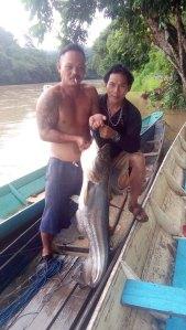Fishing, Tutoh River