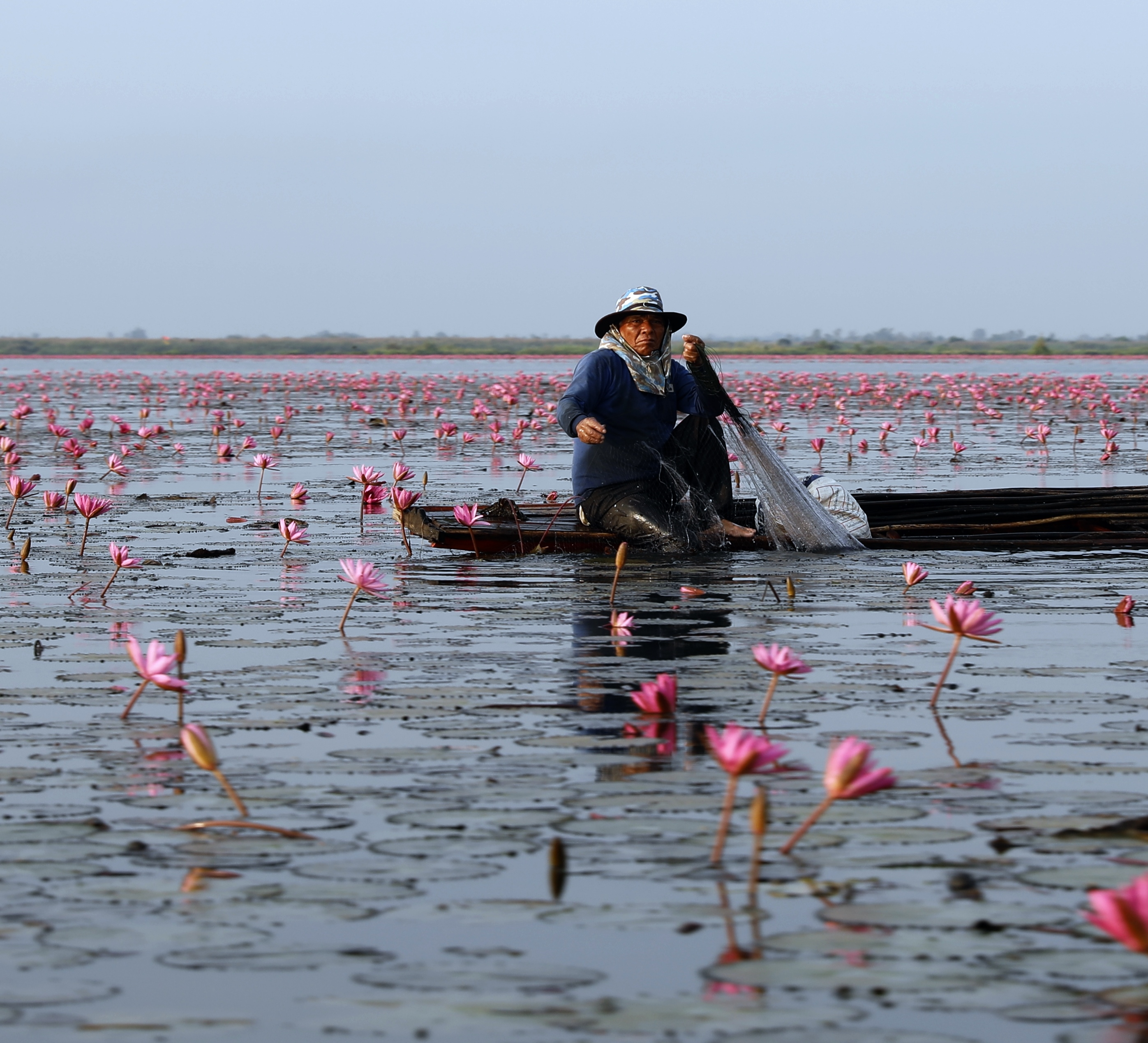 Fisherman on the Red Lotus Sea