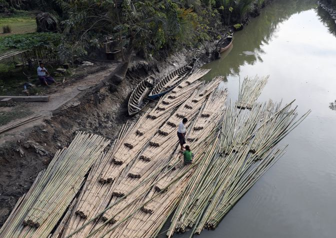 Bringing bamboo from the forest upstream