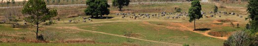 Plain of Jars and 4 bomb craters, Phonsavan