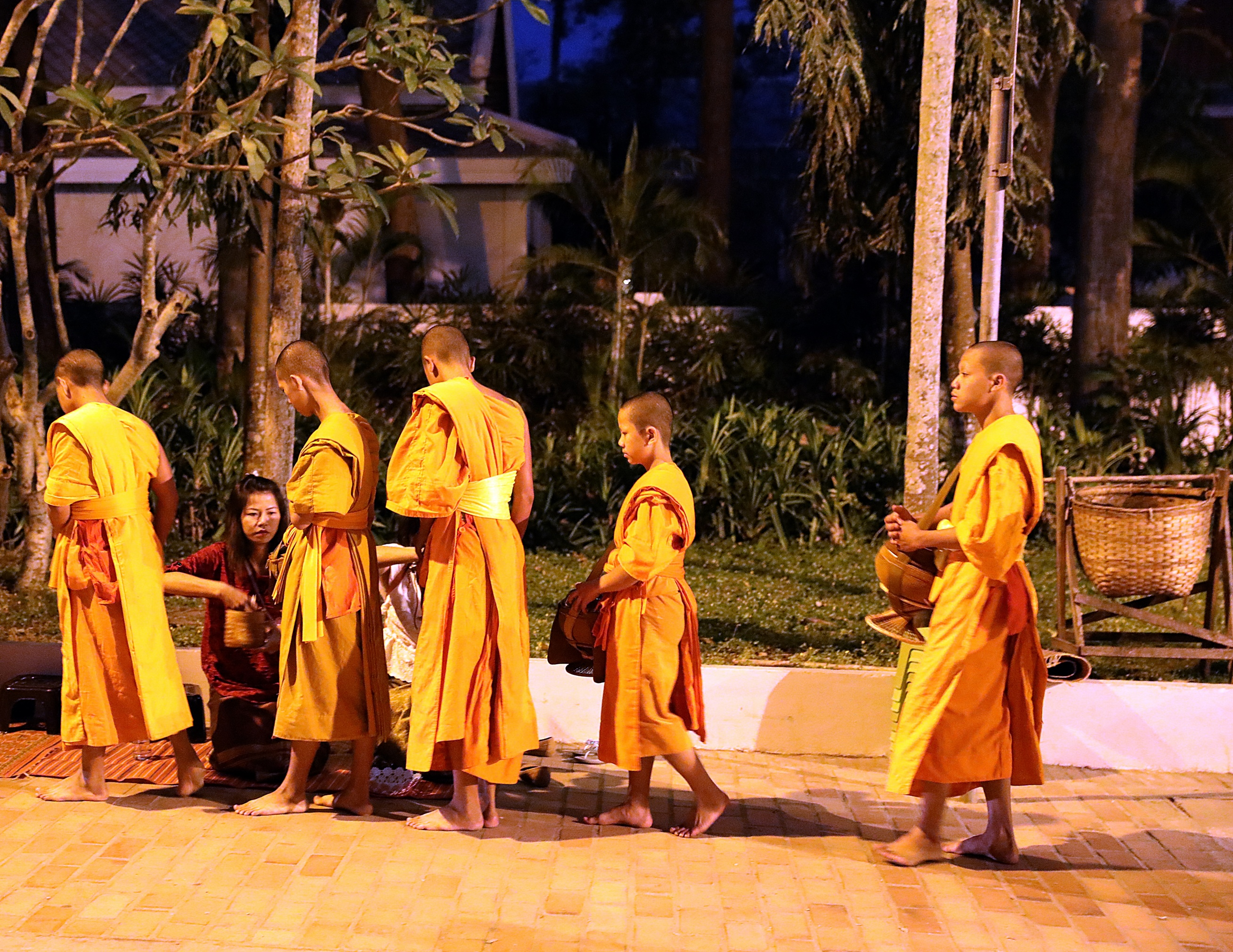 Alms Collection Ceremony, Luang Prabang