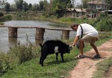 Richard teasing a goat