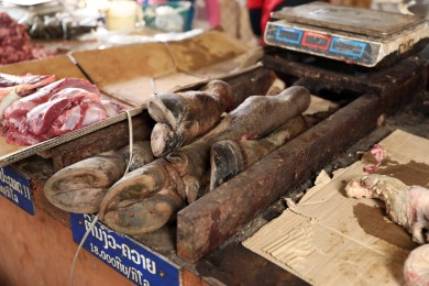 Buffalo legs for sale at the Nam Tha market