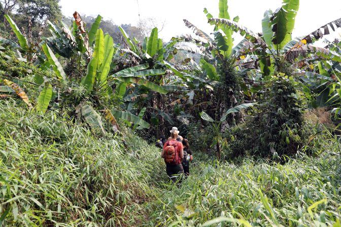 Trekking in the Nam Ha National Park