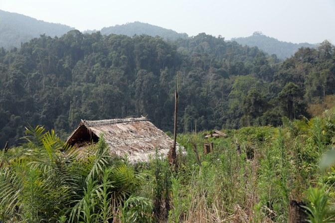 Khmu Village, Nam Ha National Park