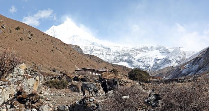 Last homestead below Mt Jichu Drakey