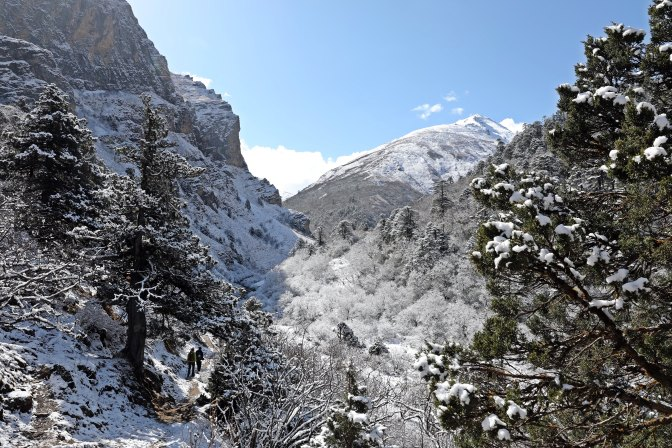 Ascending Thomba La (Pass)