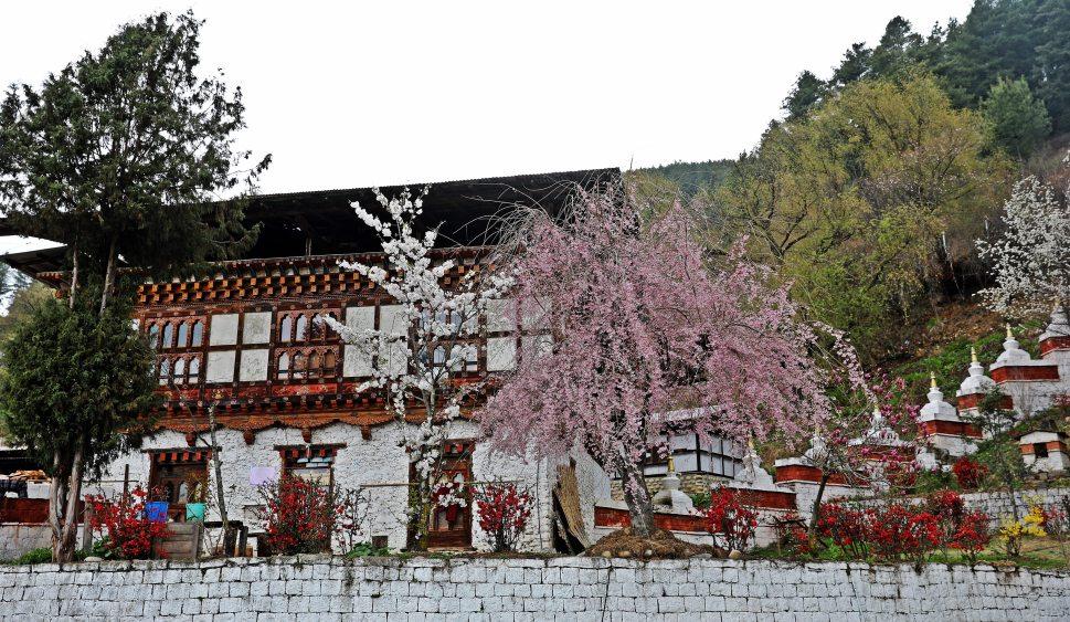 Monastery at Kurji Lhakhang (Temple)