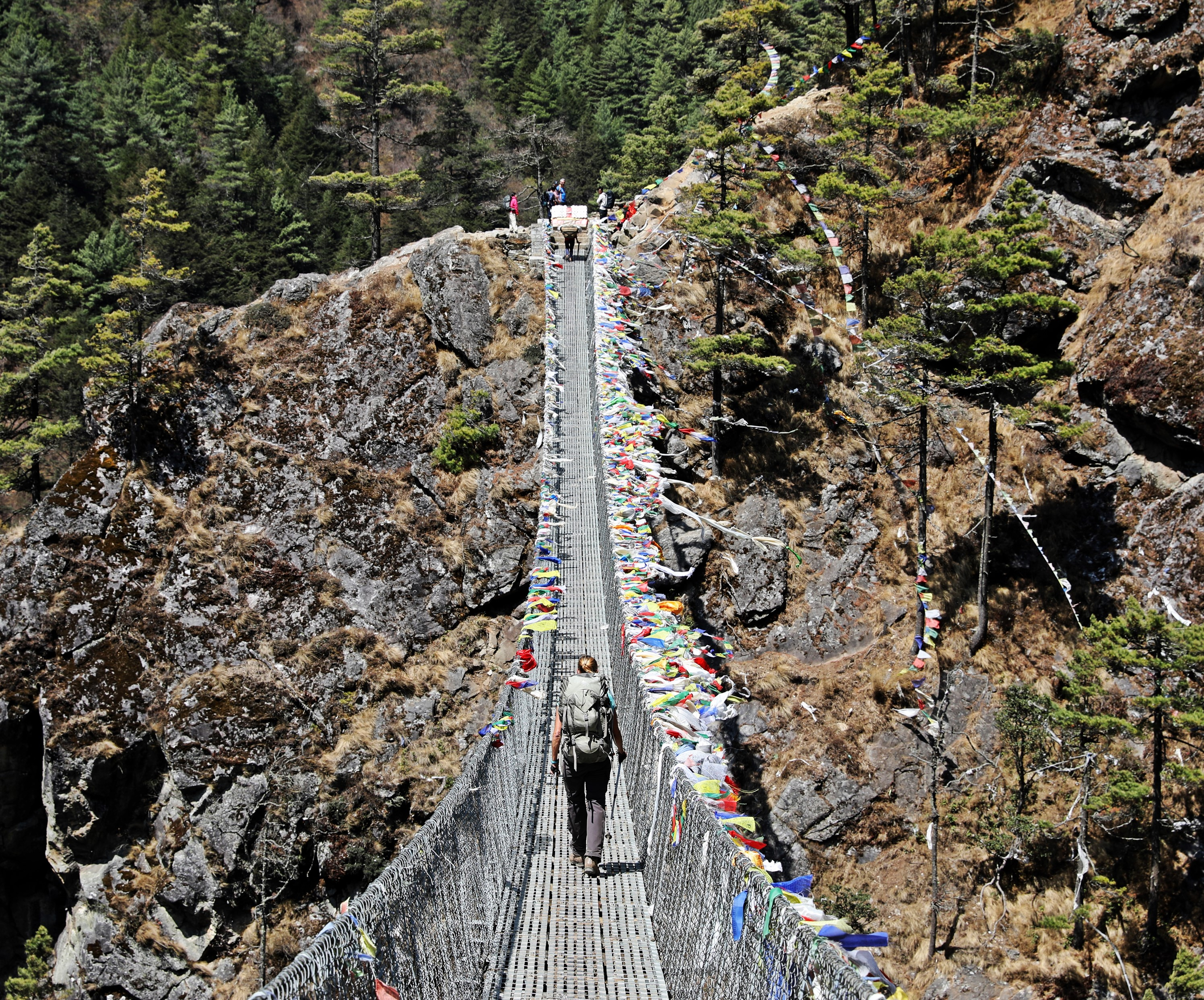 Suspension Bridge over the Dudh Kosi (River)