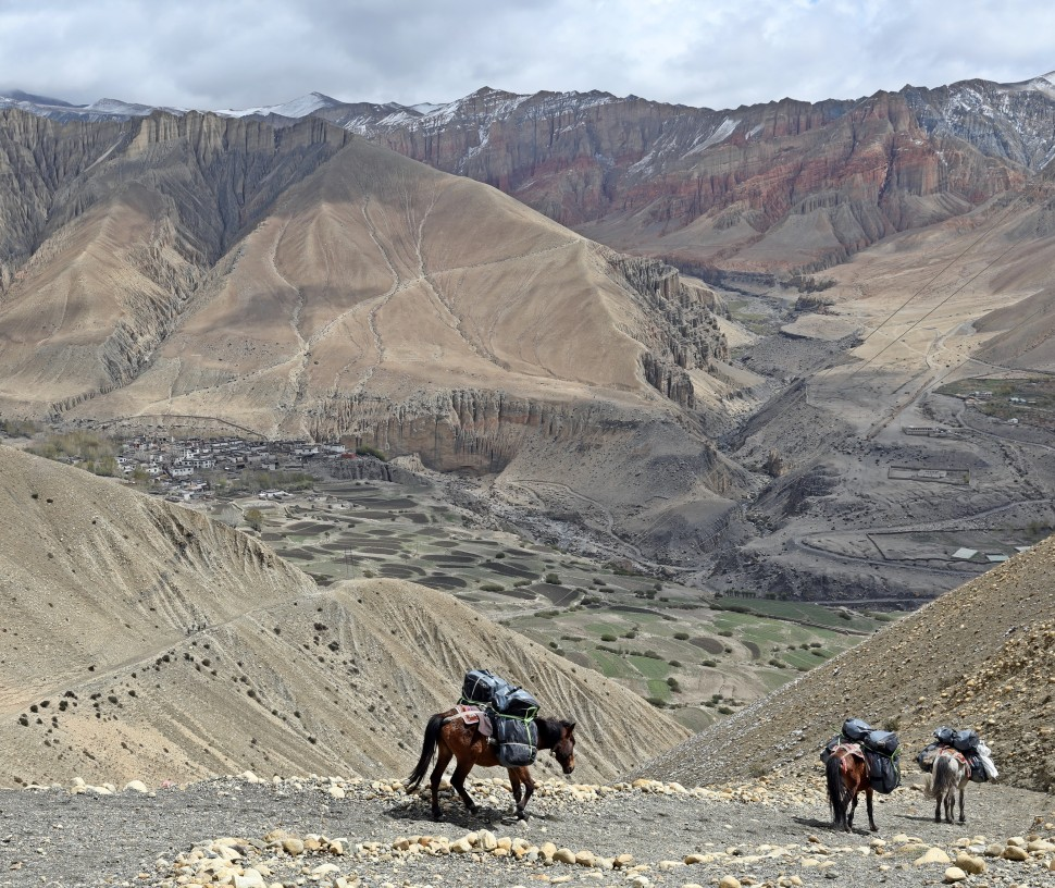 Pack mules above the village of Ghemi