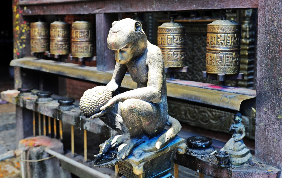 Monkey with a jackfruit, Golden Temple, Patan