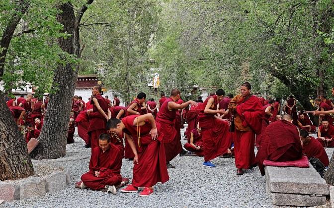 Monk Debate at Sera Gompa