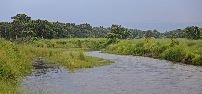 Rapti River, Chitwan National Park
