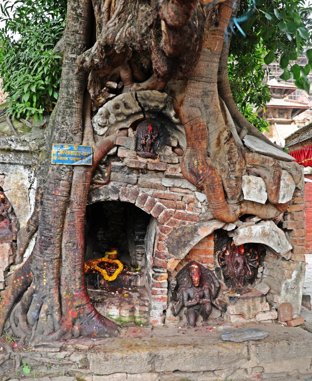Tree shrine, Durbar Square, Kathmandu