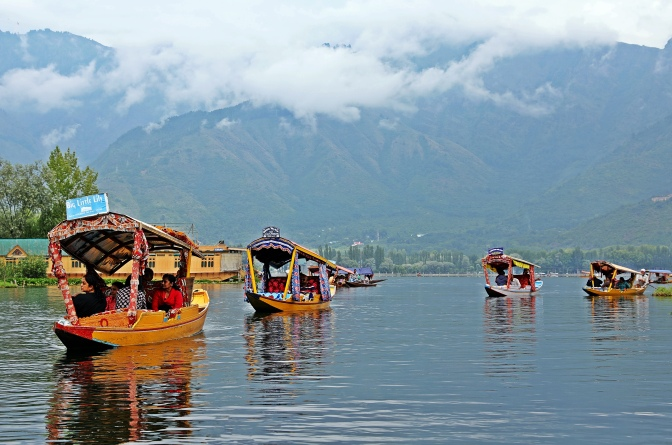 Shakaras on Dal Lake