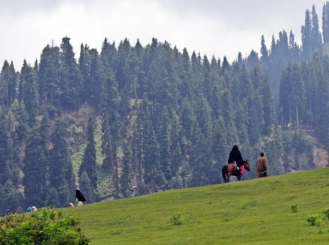 Horseback riding in Dodhpathre