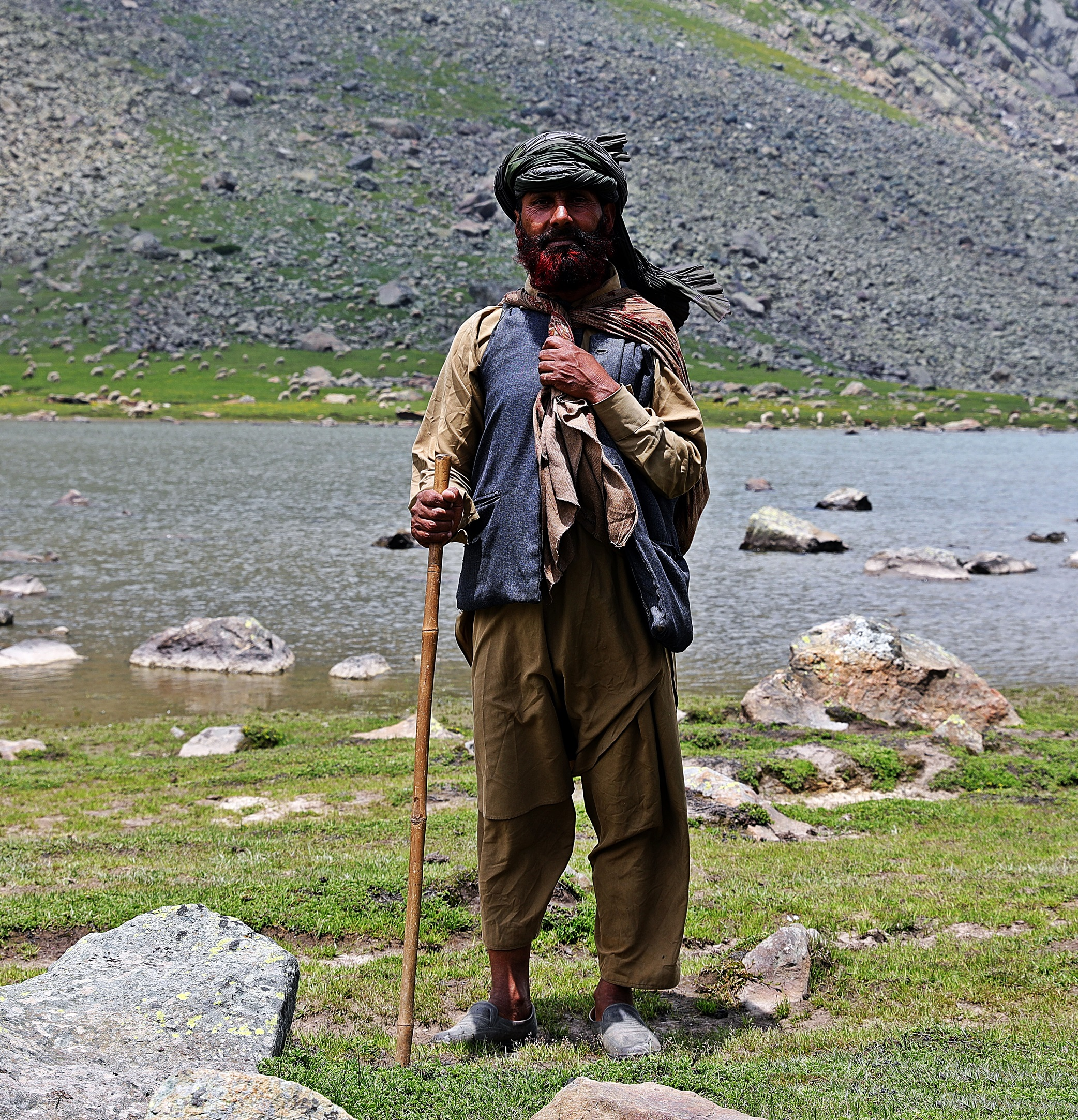 Kashmiri shepherd on the Great Lakes Trek
