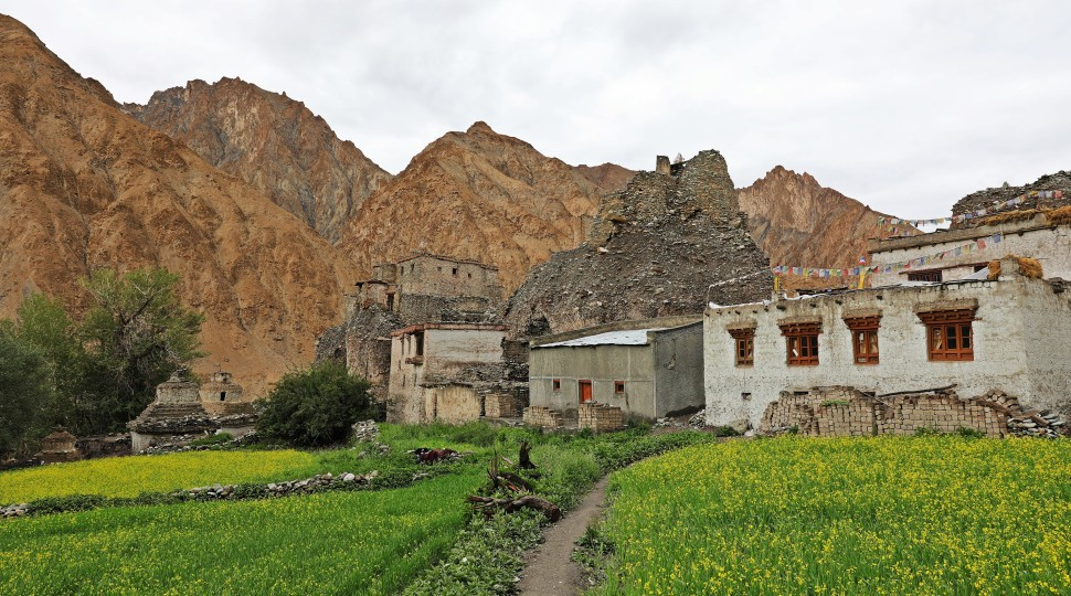 Markha village with the fort ruin