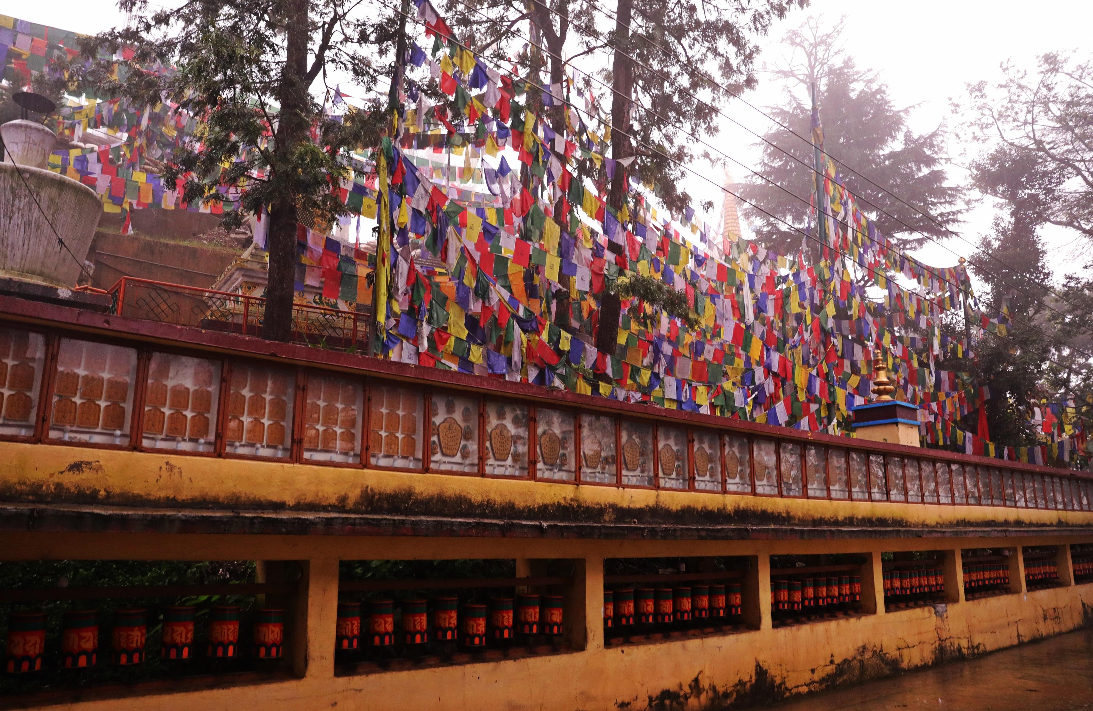 Kora around the Tsuglagkhang Complex