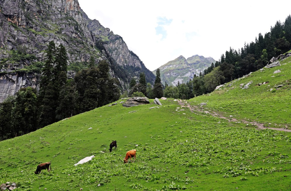 Hampta Pass Trek, Himachal Pradesh
