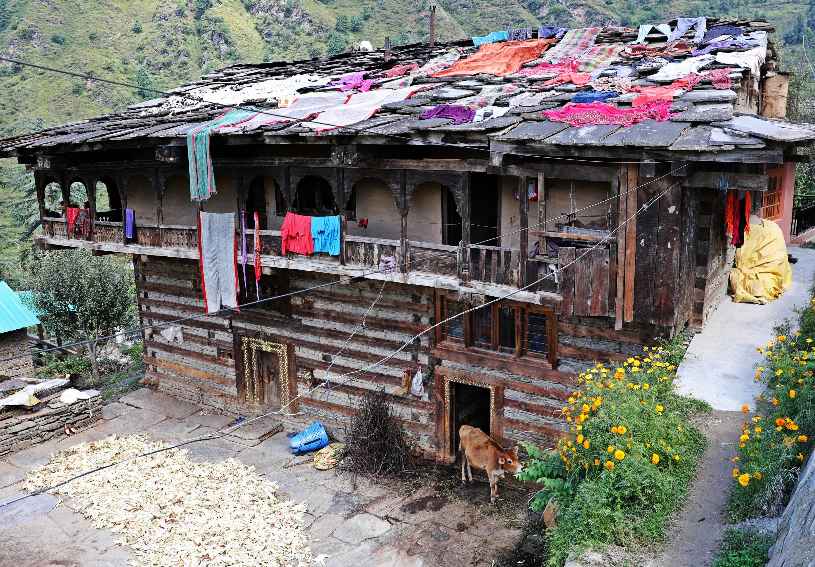 Rumsu Village, Himachal Pradesh