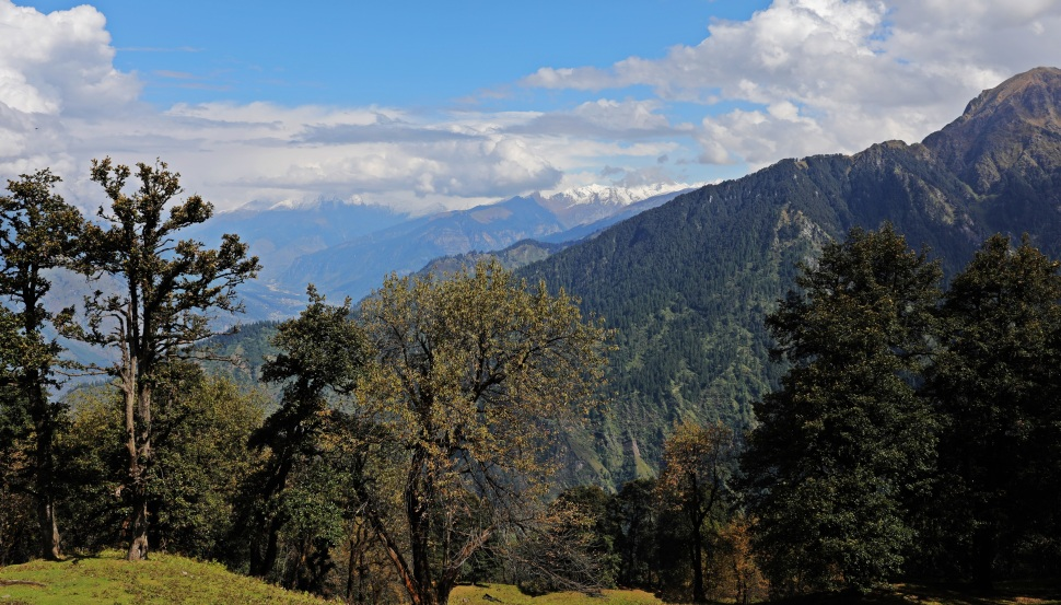 View above Rumsu, Himachal Pradesh