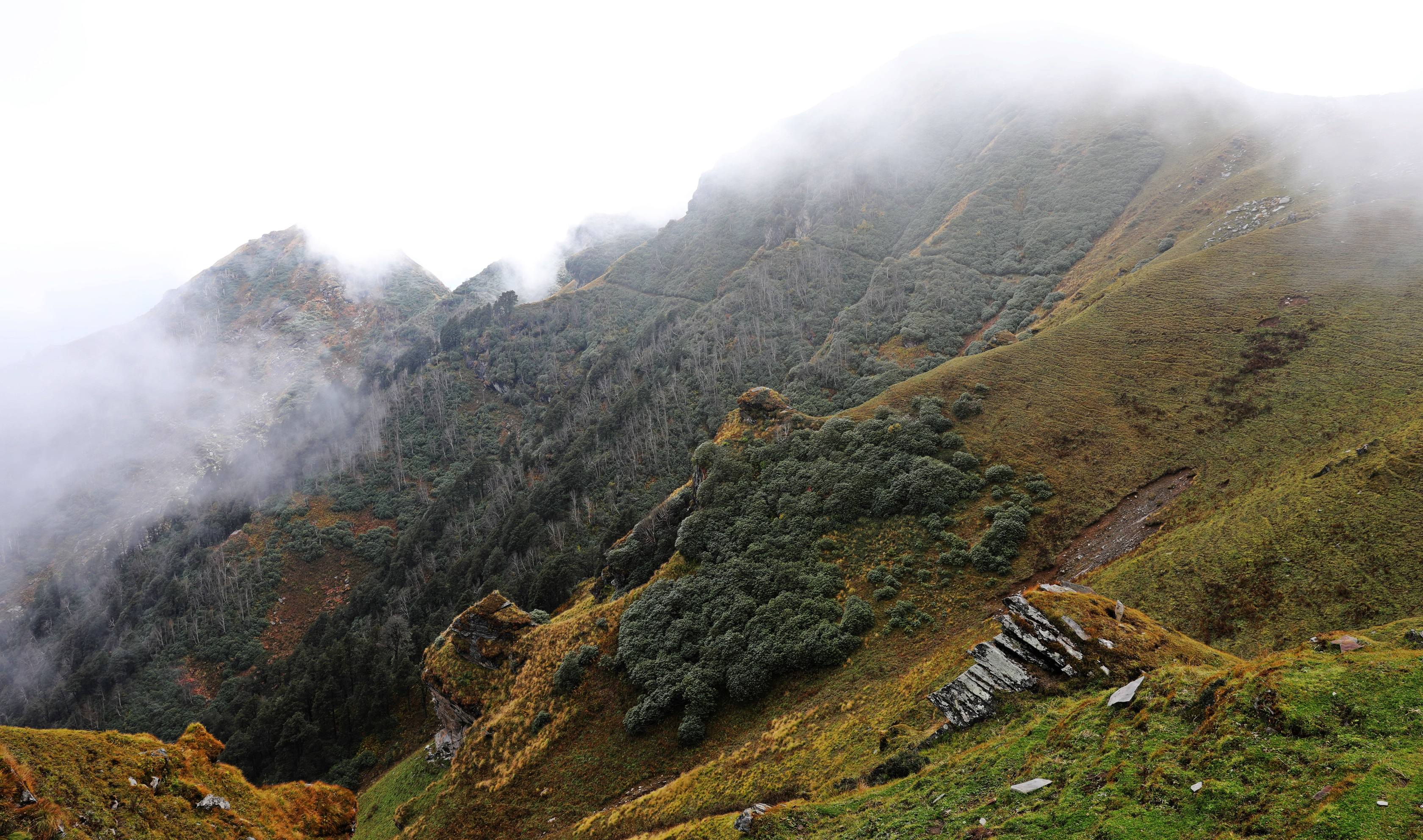Rugged gully on the Naggar to Malana Trek