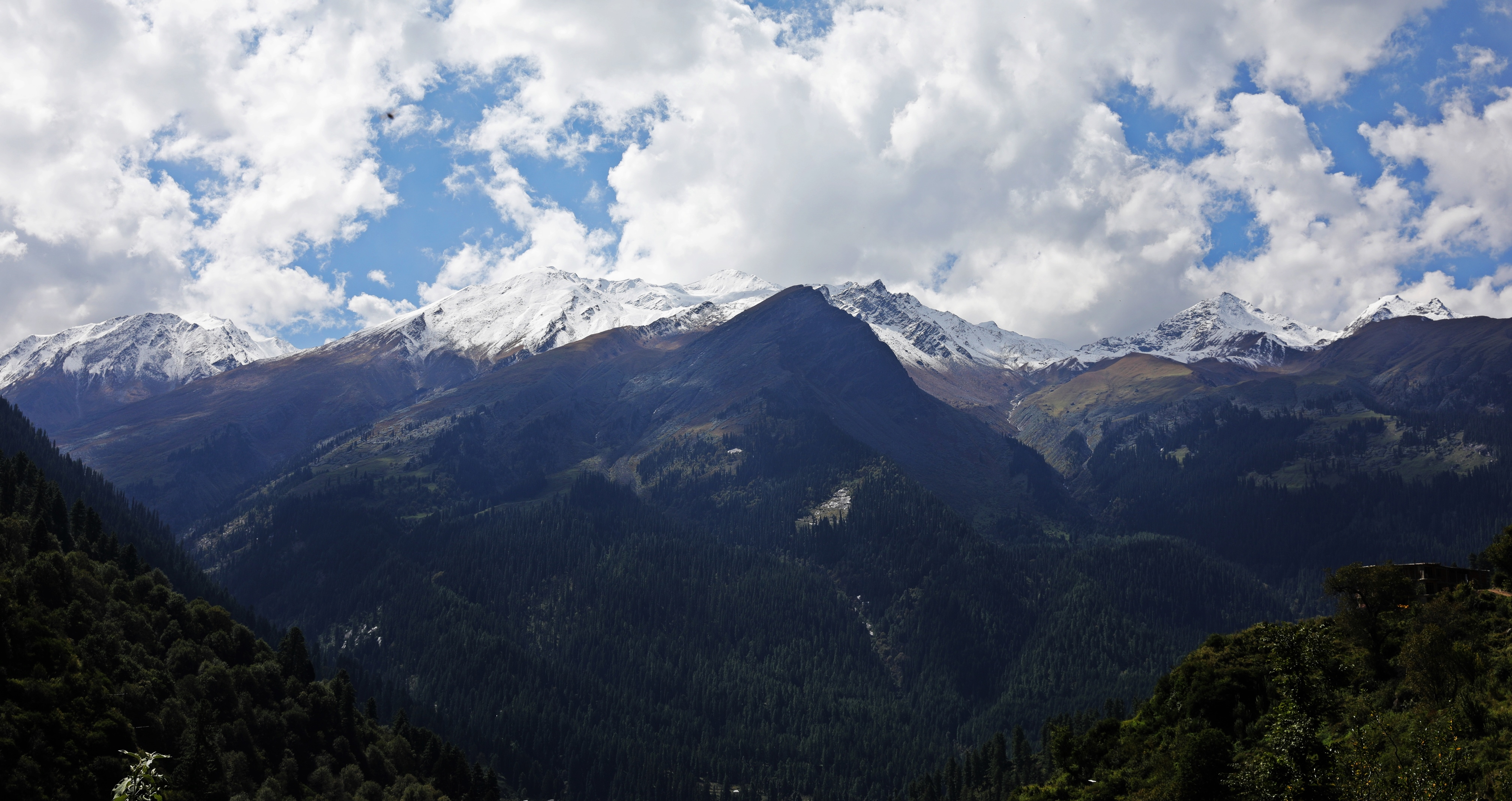Mountains around Tosh, Himachal Prades
