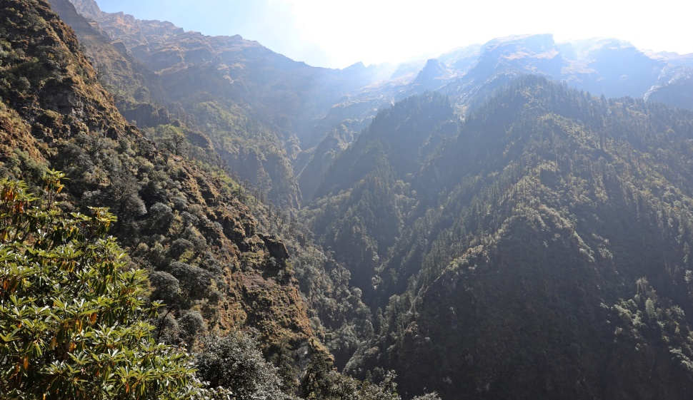 Rugged valley on Kuari Pass Trek