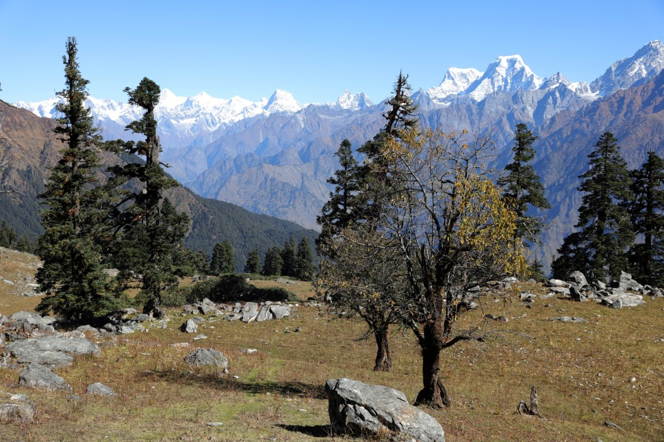 Nanda Devi Range on the Kuari Pass Trek