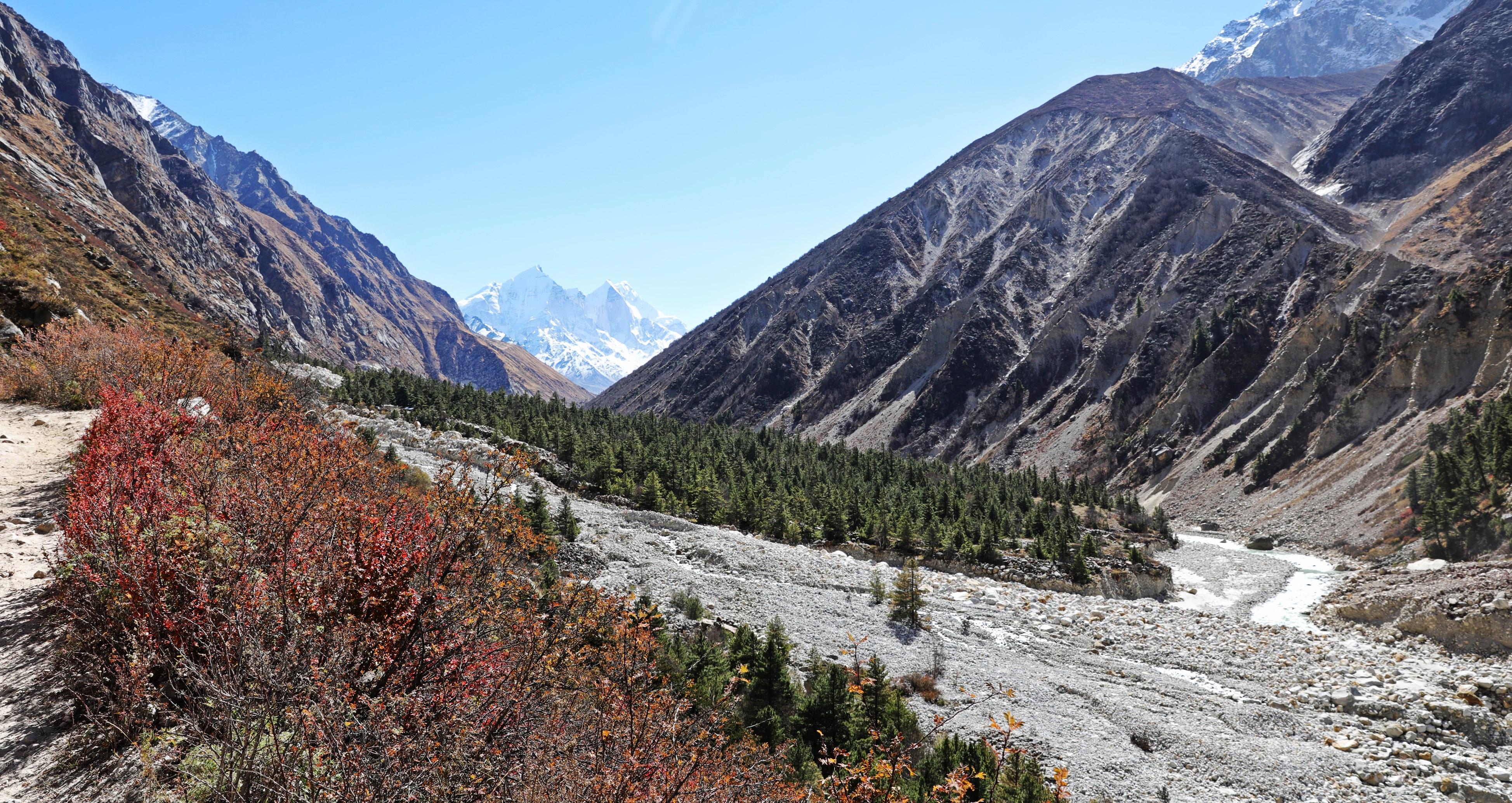 Mt. Bhagirathi