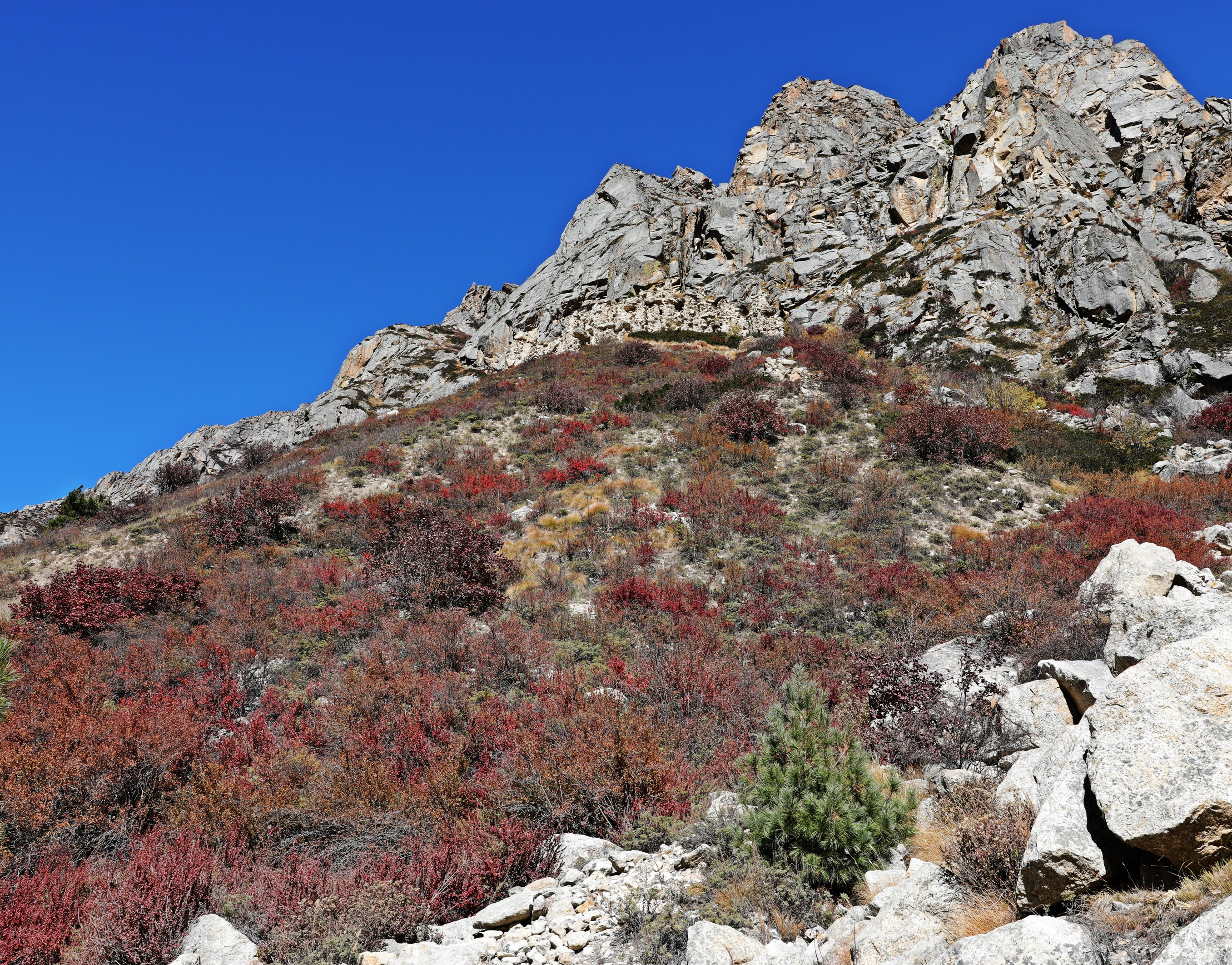 Fall colours and rock walls on the trek
