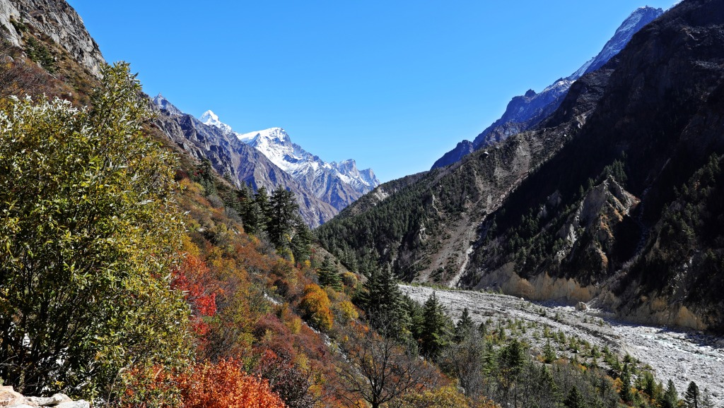 Fall colours along the Bhagirathi River