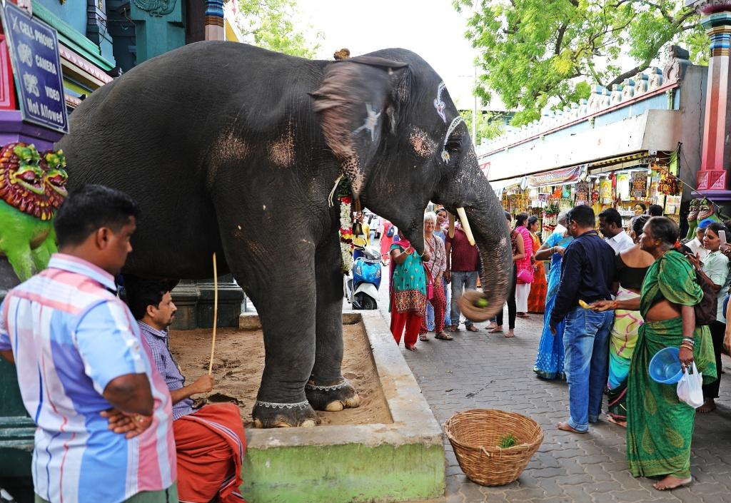 Lakshmi, Sri Manakula Vinayager Temple