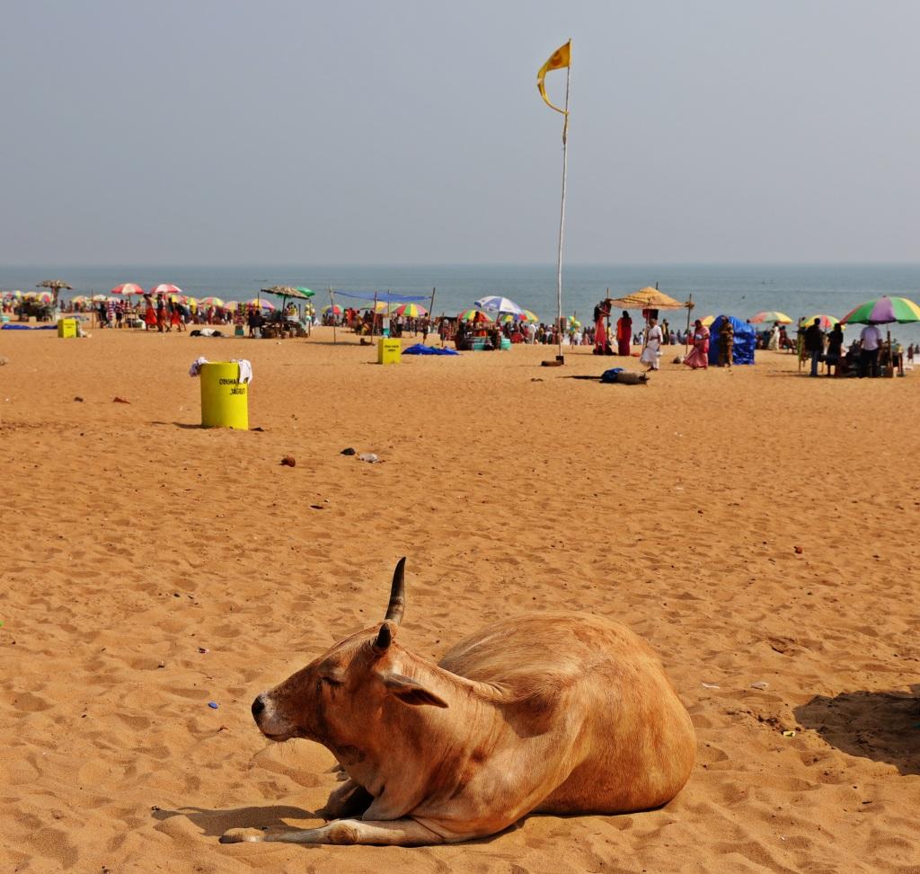 Model beach, Puri