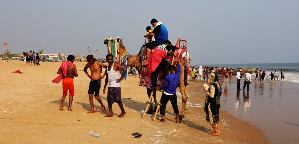 Camel photoshoot on Model Beach, Puri