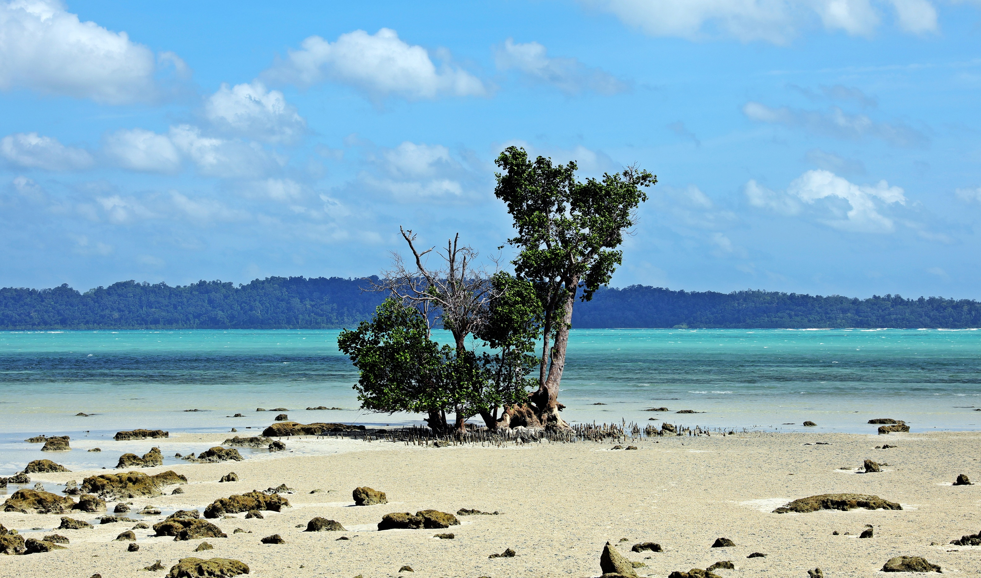 Low Tide, Havelock Island