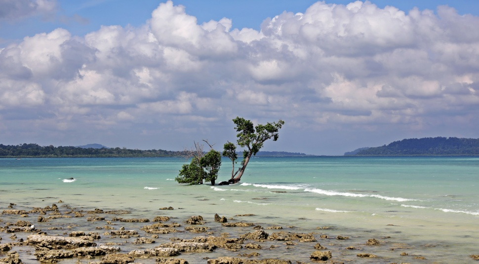 High Tide, Havelock Island