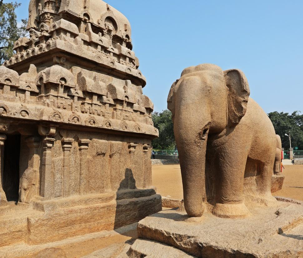 Elephant and shrine, Pancha Rathas, Mamallapuram