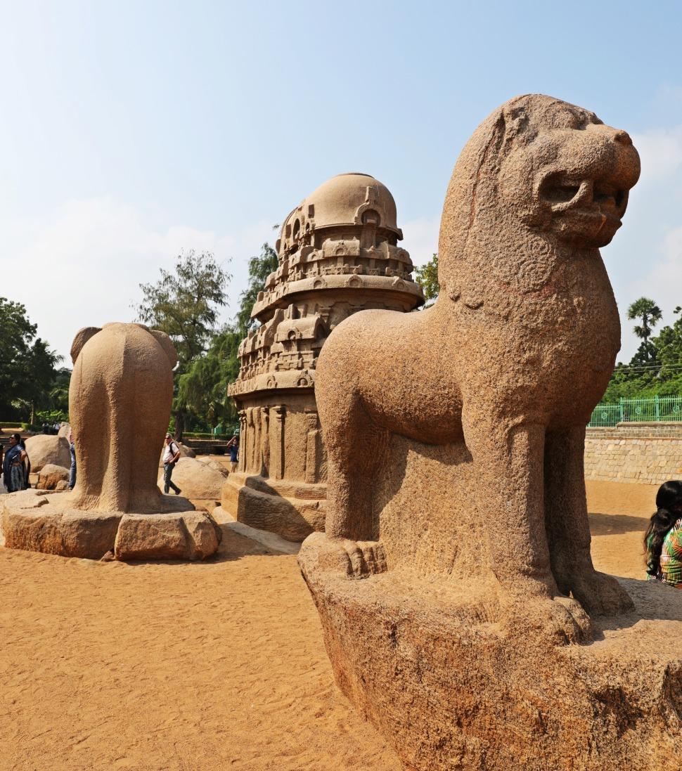 Lion statue, Pancha Rathas, Mamallapuram