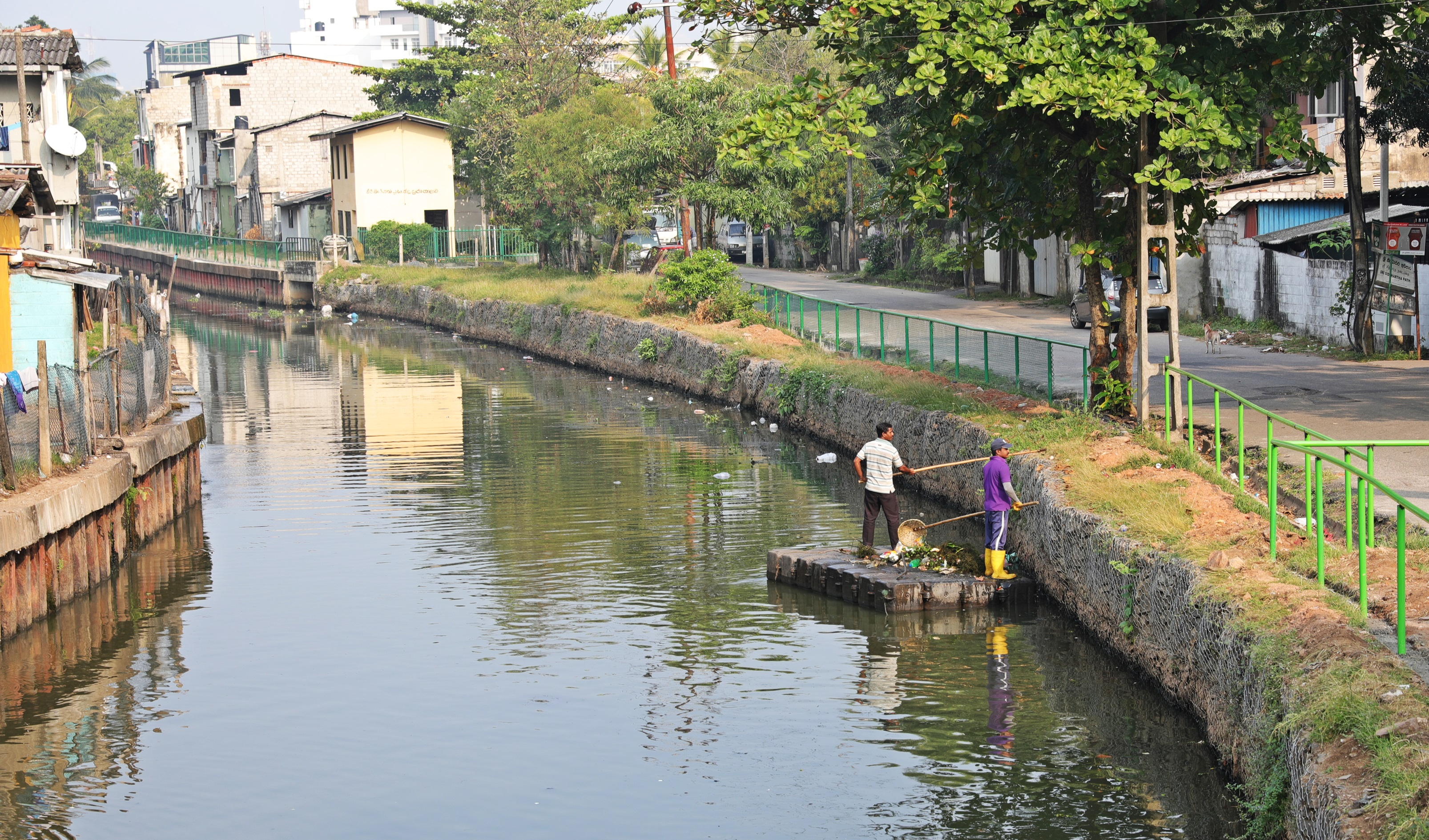 Cleaning a canal in Colombo