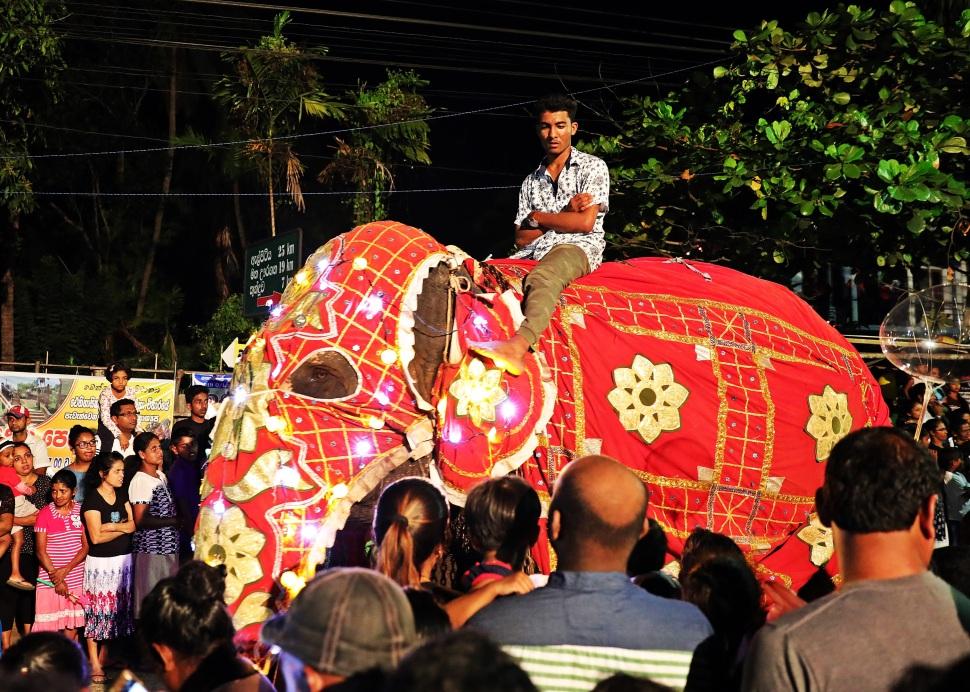 Perahera Parade, Bentota , Sri Lanka