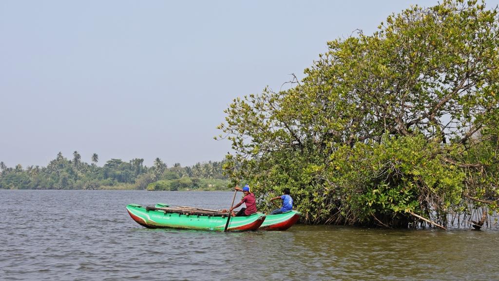 Bentota River, Sri Lanka