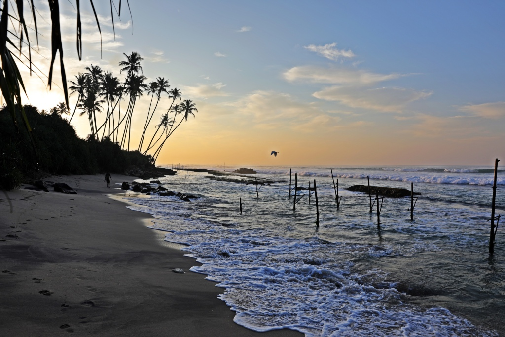 Fishing stilts at sunrise, near Ahangama, Sri Lanka
