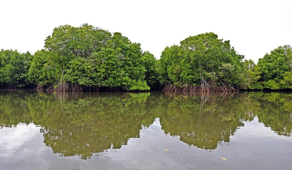 Tangalle Lagoon, Sri Lanka