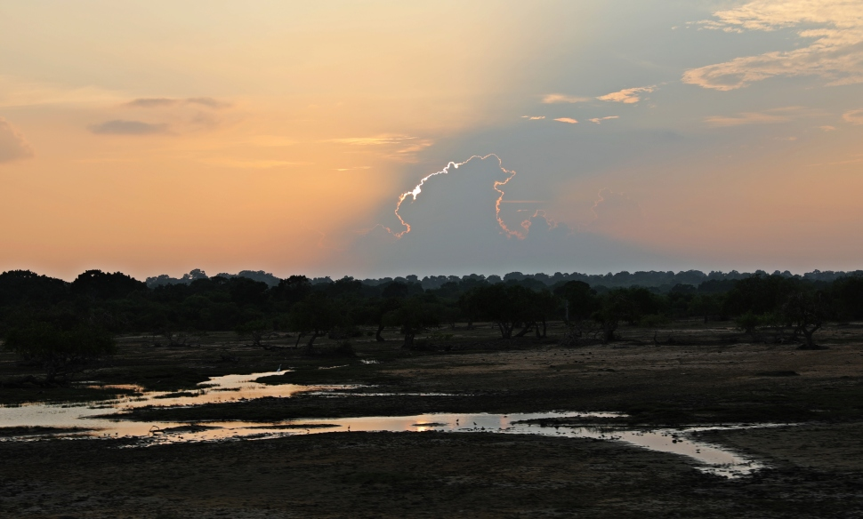 Sunset, Yala National Park